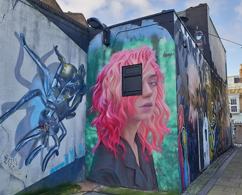 IRONY and FANAKAPAN | London - Camden | Young woman with pink hair | Picture 2019-12-23 by About Street Art